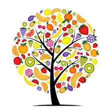 24 DE NOVIEMBRE: DÍA MUNDIAL DEL DIETISTA-NUTRICIONISTA